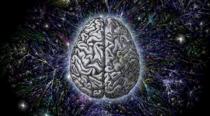 Consciousness Quantum Brain