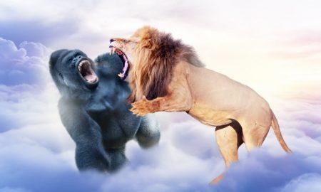 Harambe vs Cecil