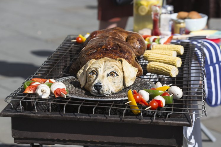 People Food Ok For Dogs