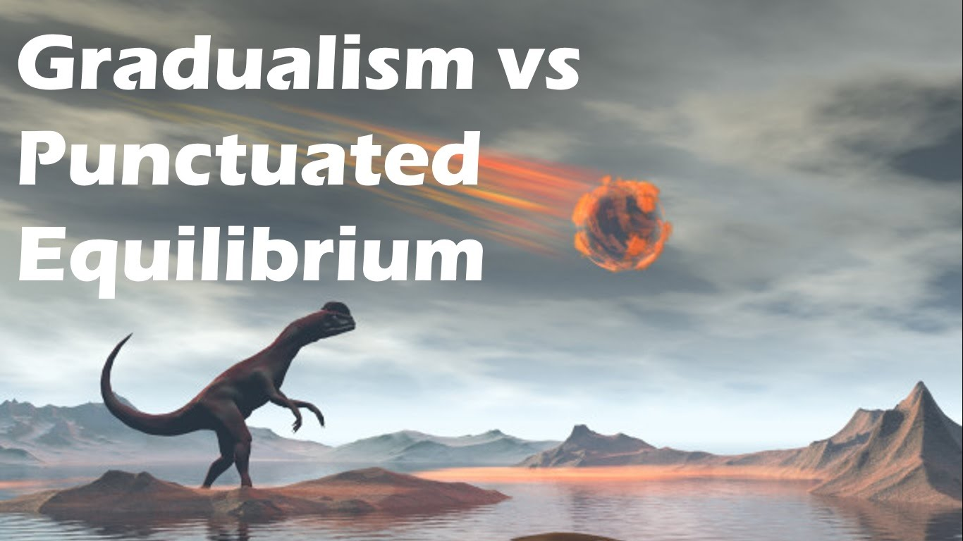 evolution-is-right-argument