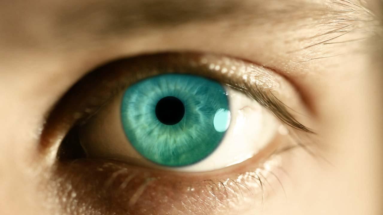 evolution-is-right-half-an-eye