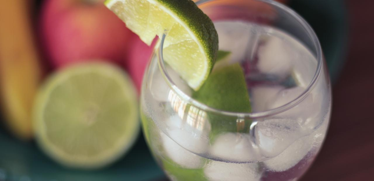 gin-and-tonic-drink