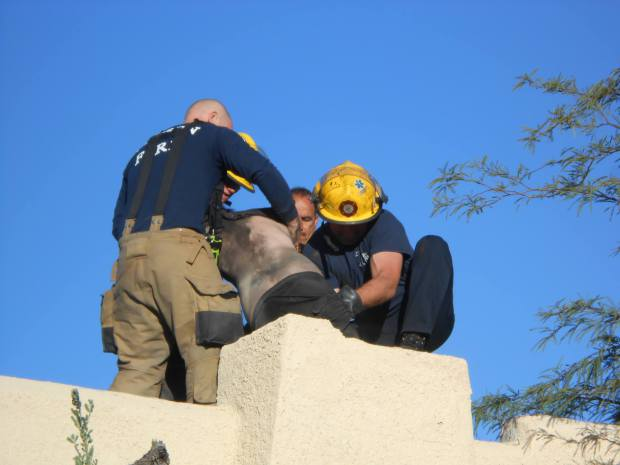 guy-stuck-chimney-2