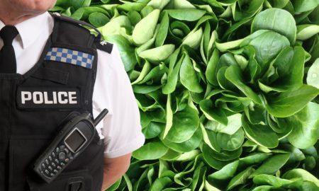 police-veggie
