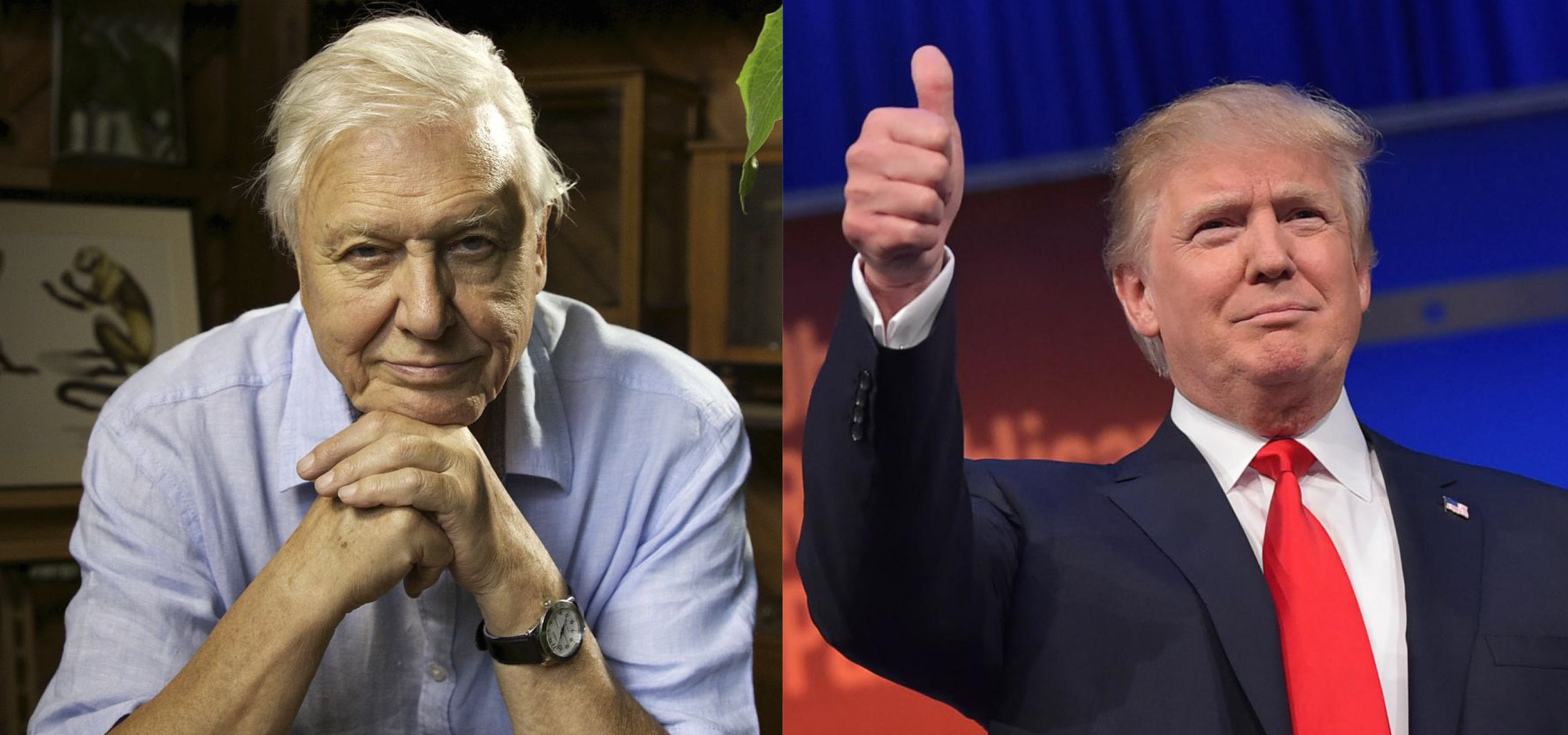 attenborough-trump