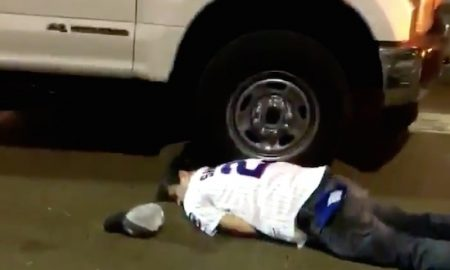 cubs-fan-knocked-out
