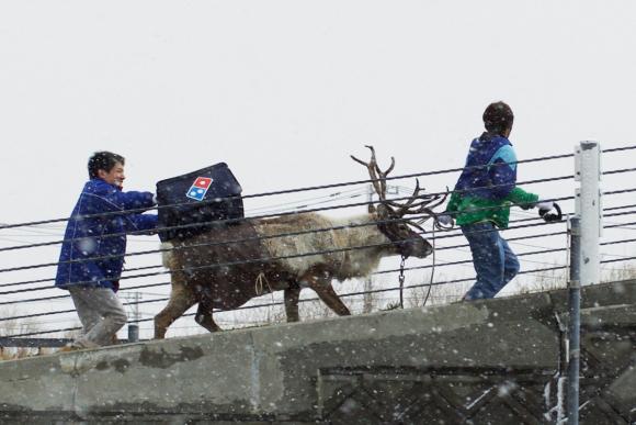 dominos-pizza-reindeer