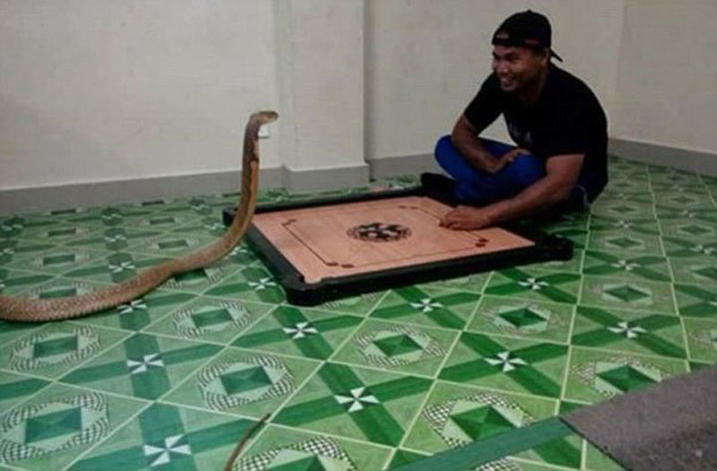 guy-and-snake-1