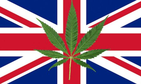 uk-marijuana