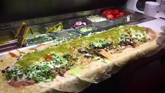 anaconda-burrito
