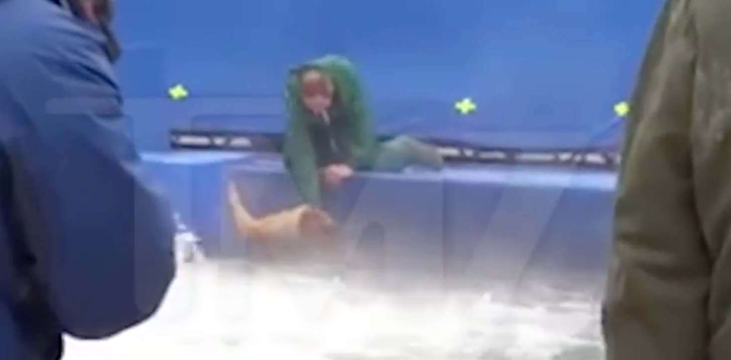 Dog Drowning A Dog's Purpose