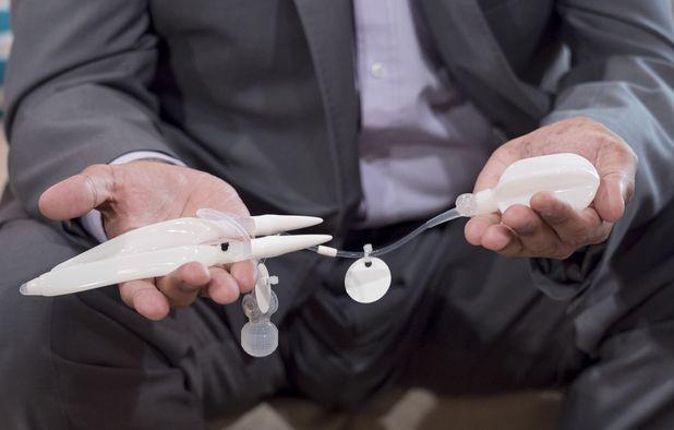 Bionic Penis