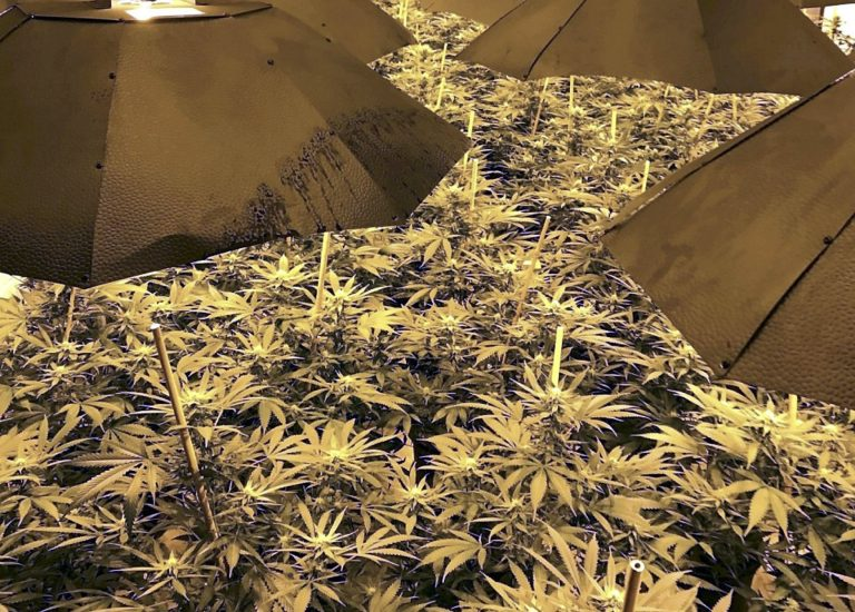 Bunker featured
