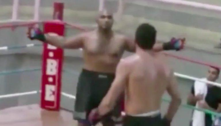 Cocky boxer