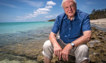 David Attenborough sea