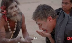 CNN reporter eats brains