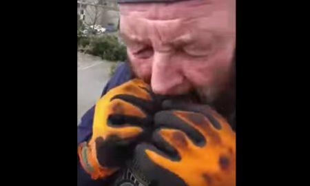 Man eats wolf spider
