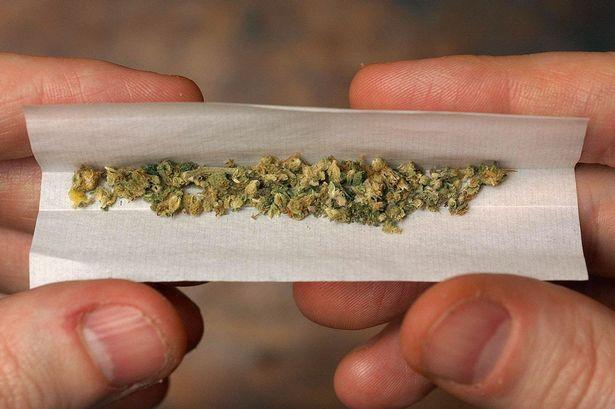 Cannabis q