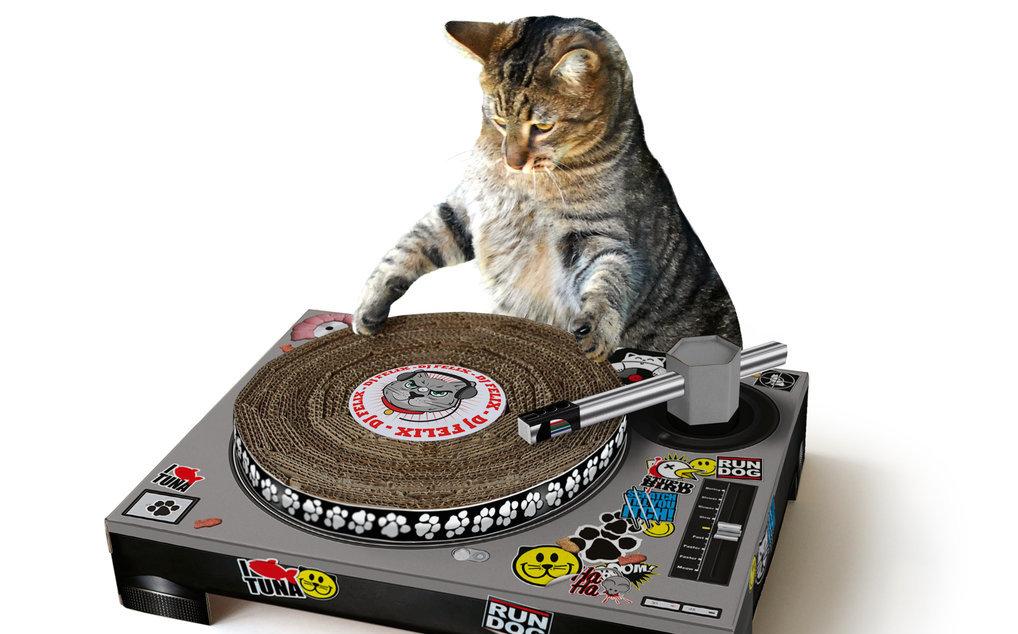 30152_catscratch-with-cat1