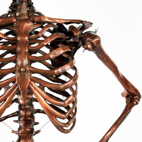 Skeleton Lampshade 2