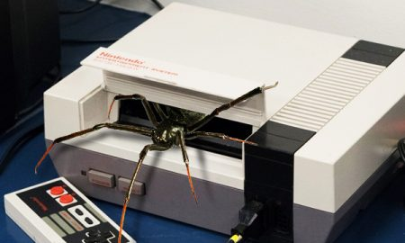 Spiders NES