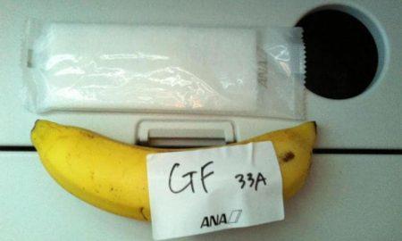 banana-pavelka-travel-large