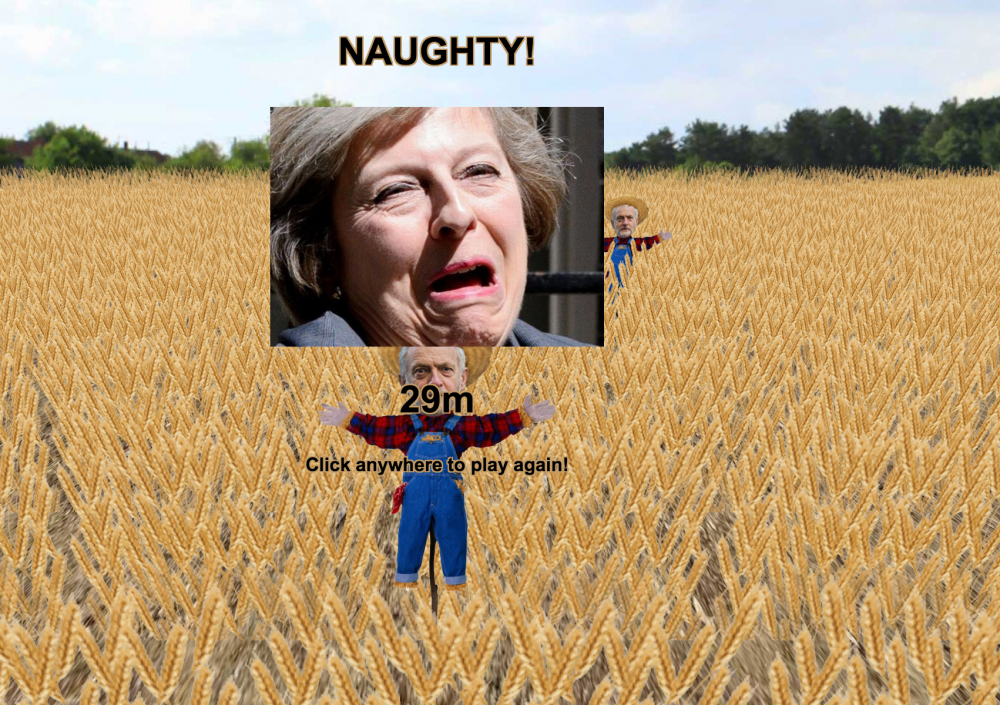 Come Wheat May 2
