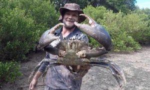Crab hunger
