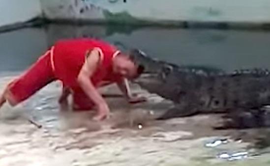 Crocodile Head Mouth