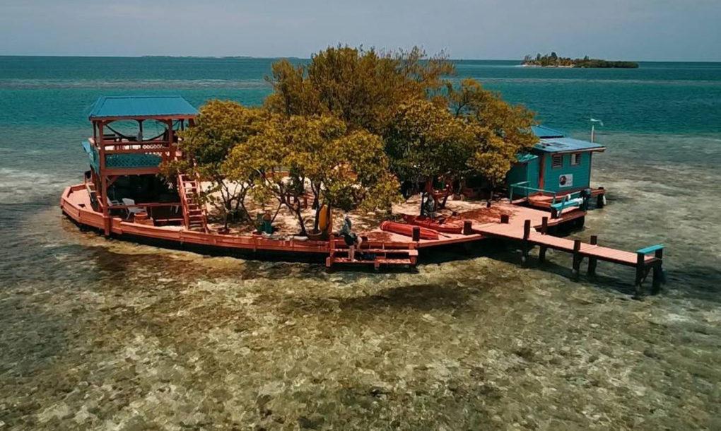 Bird Island 1