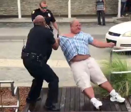Cops Tasers Batons