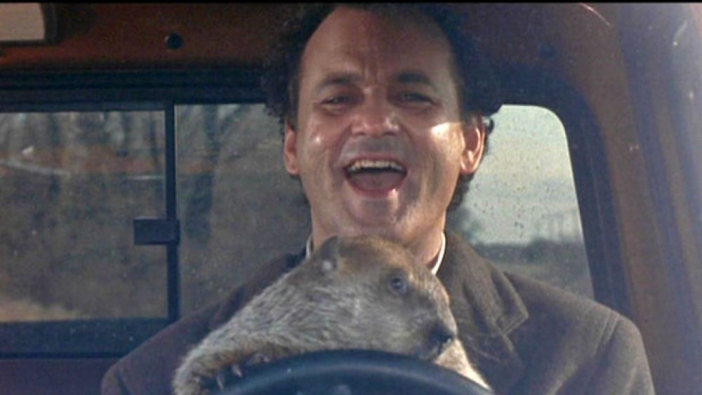 the changes in the life of phil in the movie ground hog day Watch groundhog day online groundhog day the 1993 movie worst day of his life conners take a trip on ground hog day to report on punxsutawney phil.