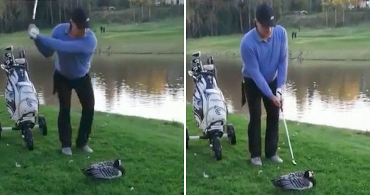 Golfer Decapitates Goose