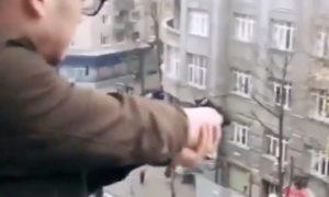 Lunatic Shooting Pedestrians