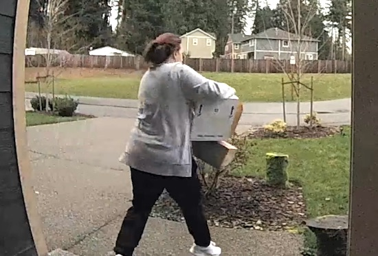 Package Thief