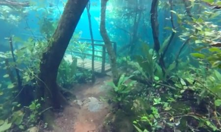 Underwater hiking trail
