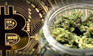 Weed Bitcoin