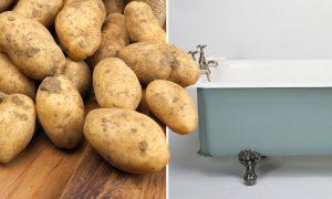 Potatotes Bathtub