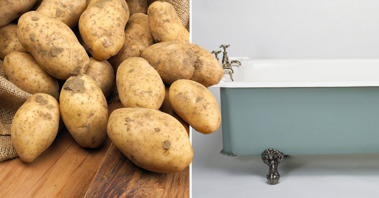 Potatotes Bathtub