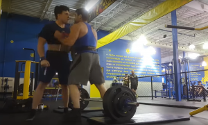 Gym Fight