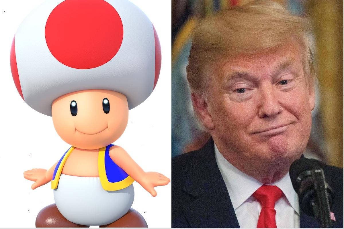 Trump Toad