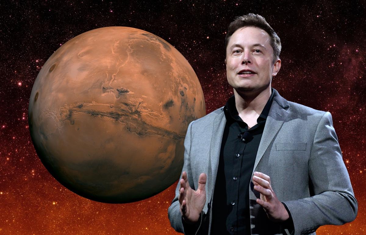 Elon Musck