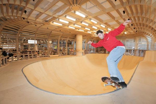 Skate Bowl 2