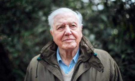 Climate Change with David Attenborough